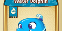 Water Dolphin