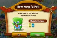 New KFP - Muscle Bulldog