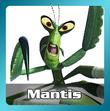 Mantis-portal-KFPH
