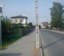 Czerwony szlak rowerowy (Kurów - Bobowiska)