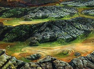 File:Tsuno Swamps.jpg