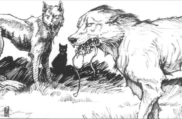 File:Wild Dogs.jpg