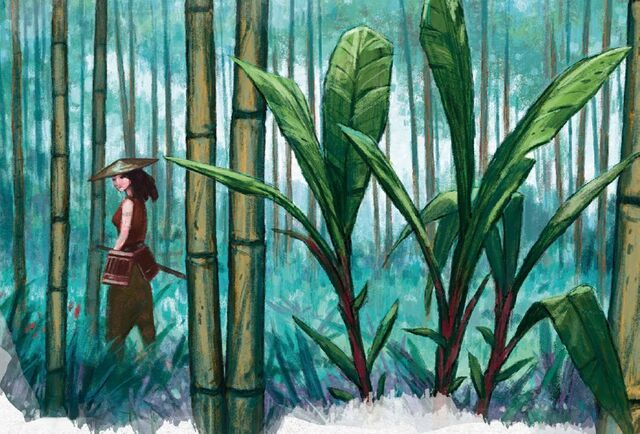 File:Bamboo Forest.jpg