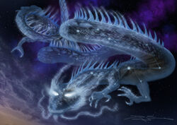 Void Dragon 5