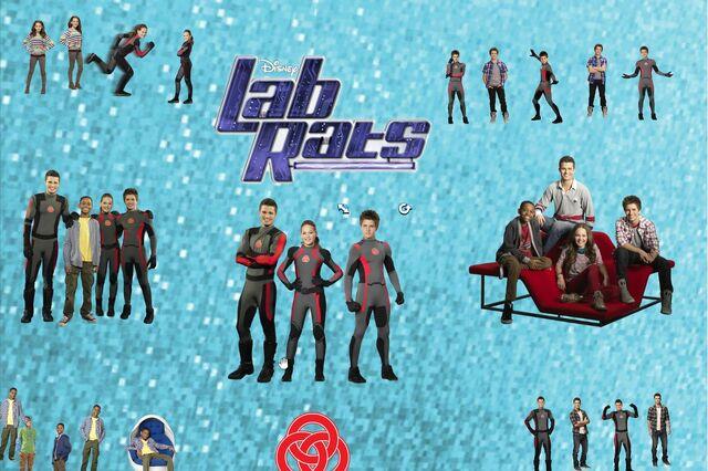 File:Lab rats mashup.jpg
