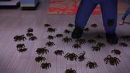 Ladybug Christmas Special (341)