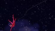 Ladybug Christmas Special (434)