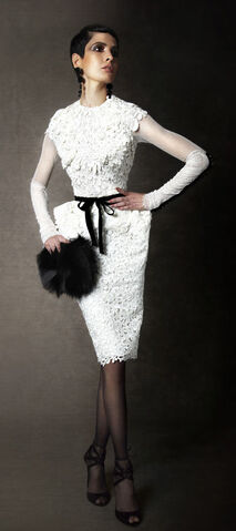 File:Tom Ford Fall 2011 Velvet Ribbon Belted Capsleeve Guipure Lace Dress.jpg