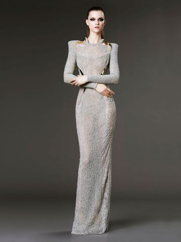 File:Atelier Versace Spring Summer 2012 long sleeve delicate sparkling silver spider silk like lace gown.jpg