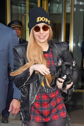 File:5-13-14 Leaving her apartment in NYC 003.jpg
