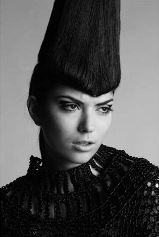 File:Charlie le Mindu Black Cone wig.jpg