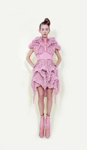 File:Long Tran - Spring-Summer 2014 Collection.jpg