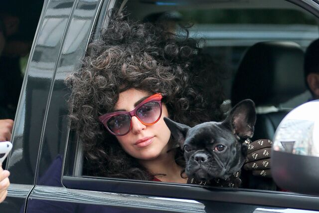 File:7-30-14 Leaving her apartment in NYC 003.jpg