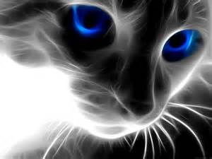 File:Black-cat-with-blue-eyes-animedownload-iphone-black-out-going-dark-imore-wallpaper-1240x690-hd-rei9r24q.jpg