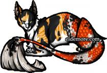 Cat-fish Sea Servals6