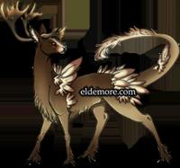 Elder Elkrin4