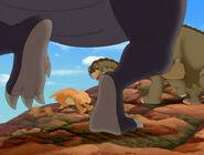 Undershot of Cool Gray Sharptooth