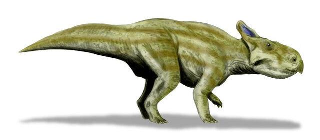 File:Montanoceratops.jpg