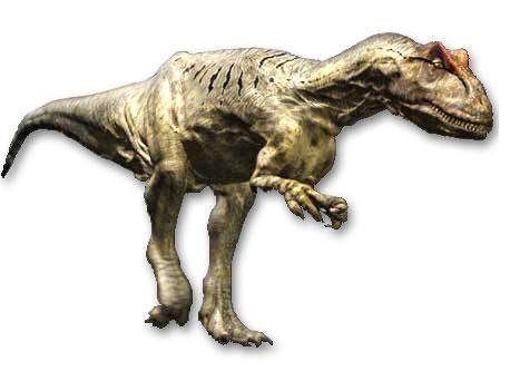 File:Allosaurus new.jpg