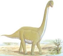 Dinosaur-images-057-resize