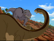 Cool Gray Sharptooth looking