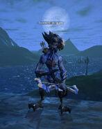 Scalewind-iceclipper