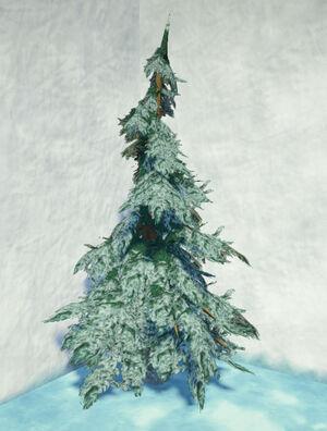 Tundra-fir-snowy-2