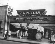 Egyption