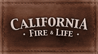 File:Arson kelso 01.png