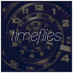 Timeflies cover