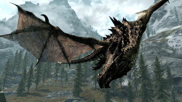 File:Dragon.jpg