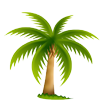 File:Palm.png