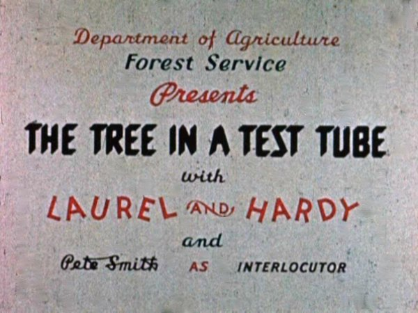 File:The tree in a test tube title card .jpg