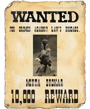 Mirta's Wanted Poster