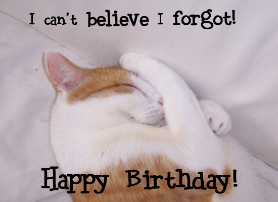 File:CatBelatedBirthday.jpg