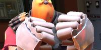 Bird-Hugungi