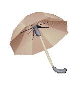File:Item Costumer's Umbrella.png