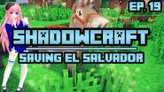 ShadowCraft E19