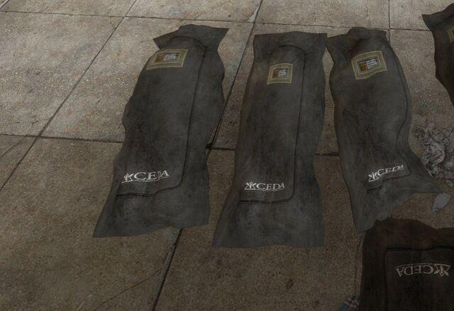 File:CEDA body bags bus station.jpg