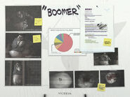 BoomerPosterCEDA