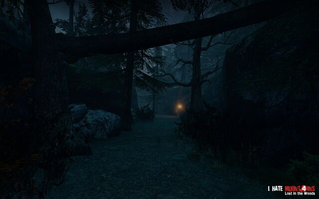 File:Ihm forest 07.jpg
