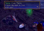 Terra meets noa