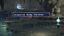 Body Purifier Chest 2 Limestone Cave