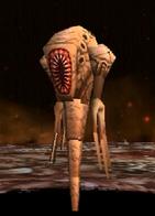 Melbu Monster
