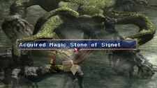 Magic Stone of The Signet Chest Marshlands