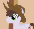 Cowpony Hat equipped.png