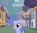 Bluebell