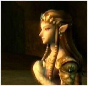 Zelda looks on