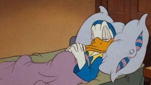Donald sleeping