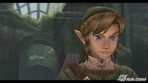 Link looking on